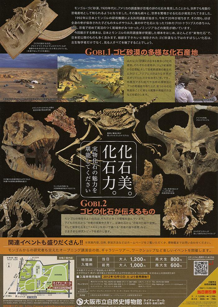 モンゴル恐竜化石展裏3